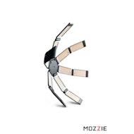 哈德逊蜘蛛Mozzie
