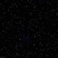 Seamless Rental - 9' Black Onyx